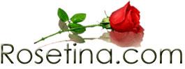Welcome to Rosetina.com